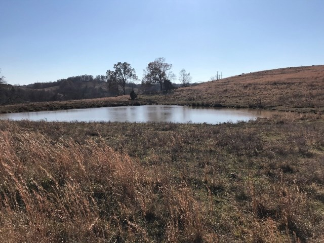 Ozark Property, Farm Land