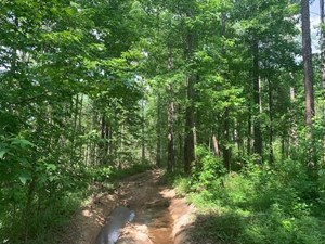 HUNTING PROPERTY FOR SALE FRANKLIN COUNTY MISSISSIPPI