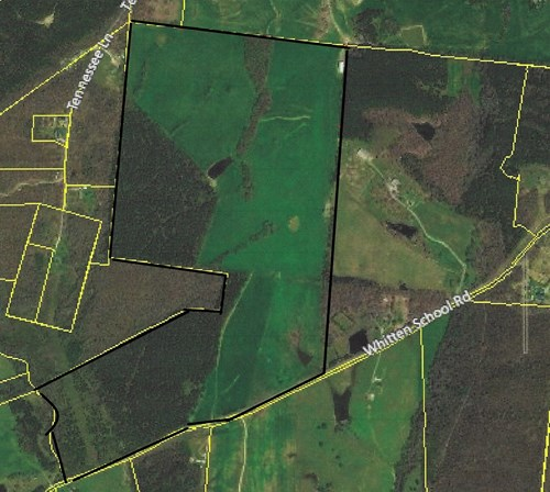 Excellent Hunting tract in Southern TN!