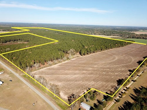 327ac Timber Land For Sale N of Hartford, Alabama  Geneva Co