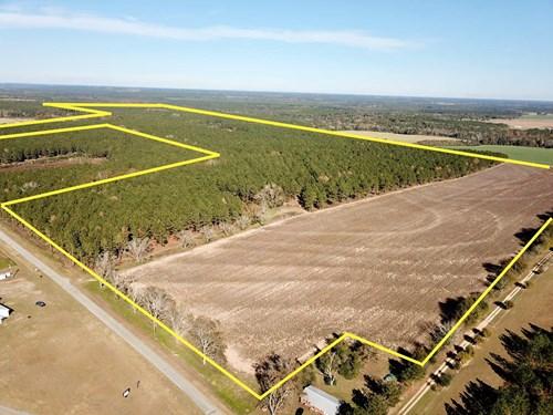 327ac Timber Land For Sale N of Hartford, Alabama  Geneva Co