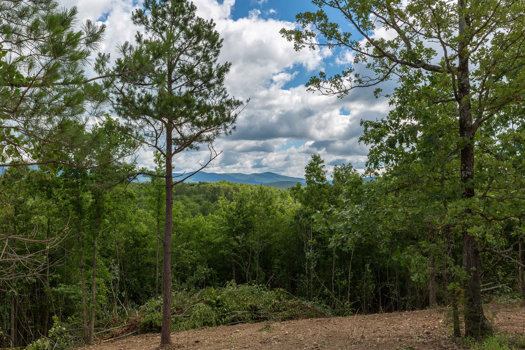 Wooded acreage close to Mena