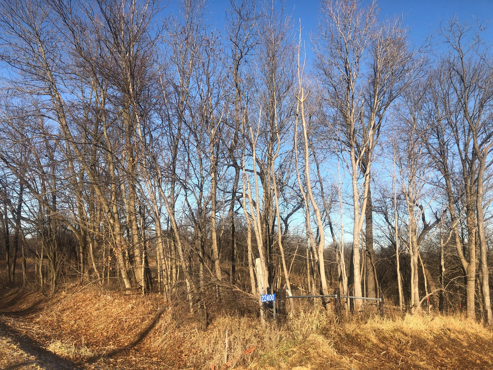 Iowa Hunting Property for sale!
