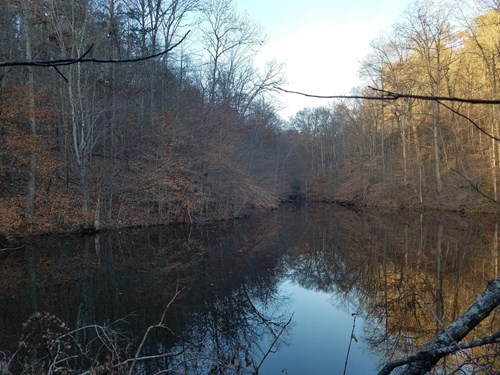 Hunting land for sale in Kentucky with Timber