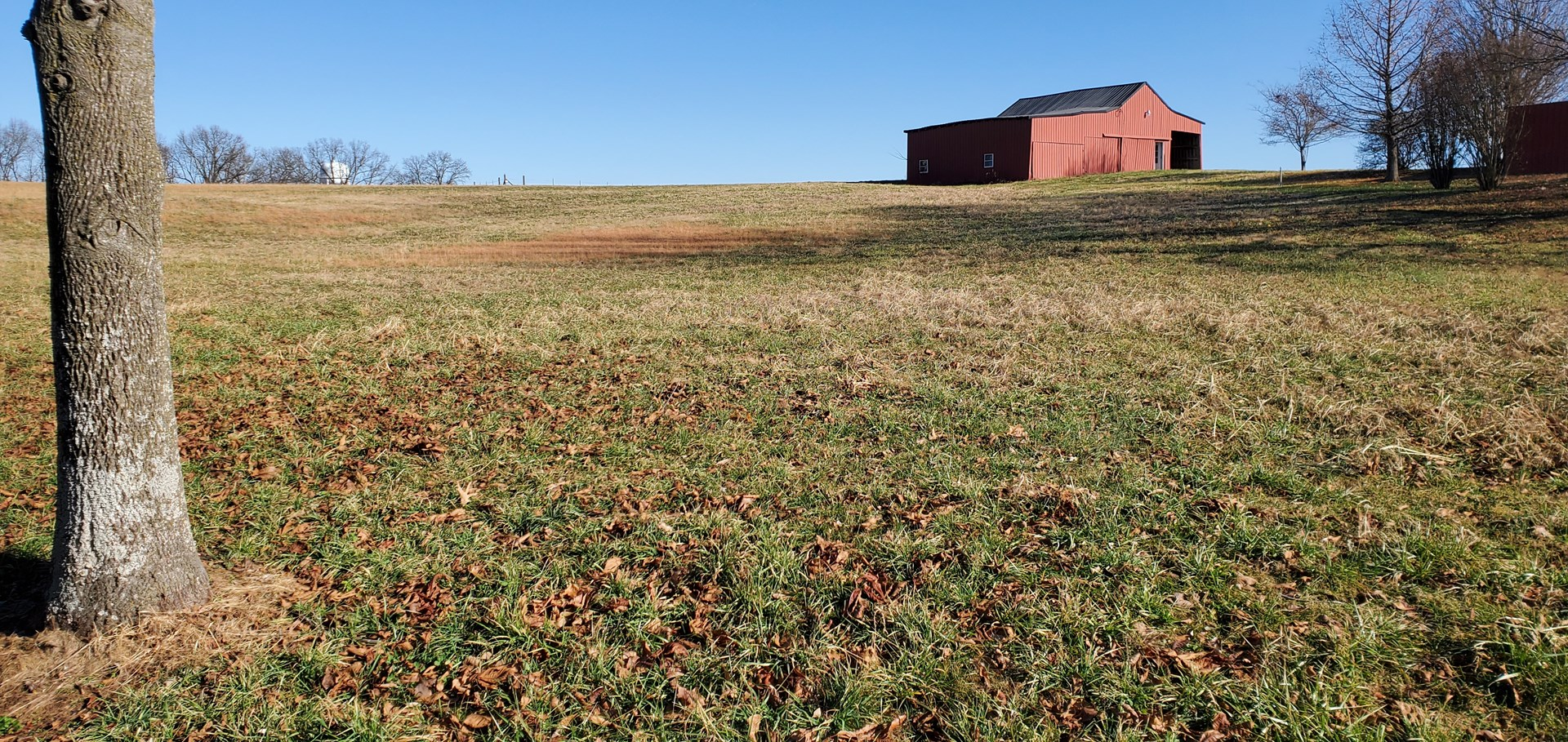 5.8 acre lot with barn for sale near Franklin, Ky.