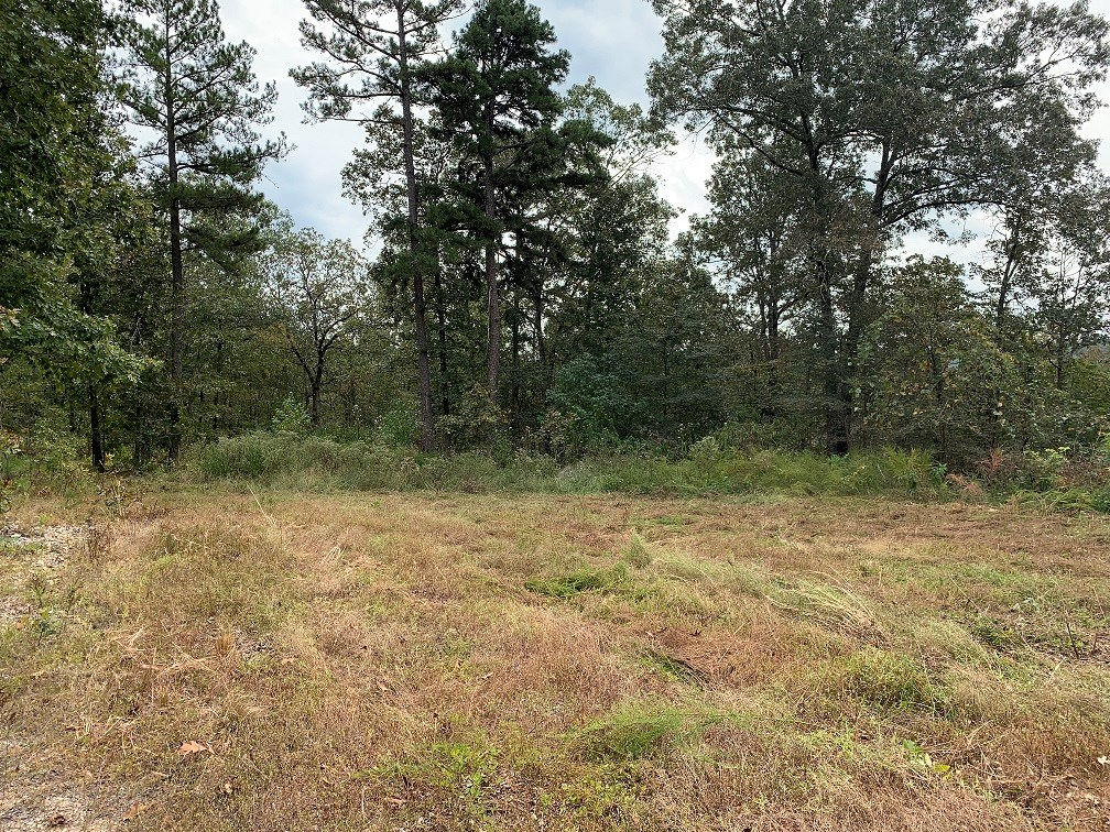 Hunting Land For Sale Near Melbourne, AR
