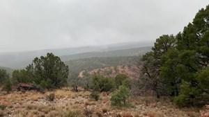 MOUNTAIN ACREAGE IN HUNTING AREA NEW MEXICO