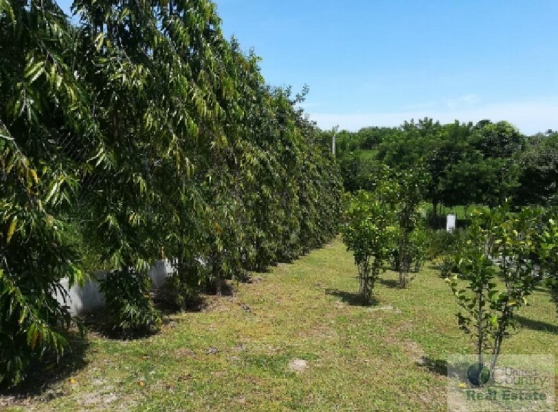 Lot For Sale Panama Real Estate