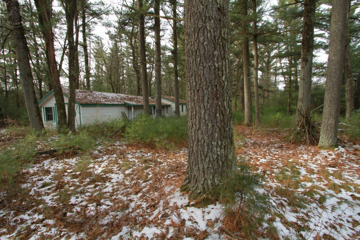Affordable Wooded Land with Building Site For Sale in South
