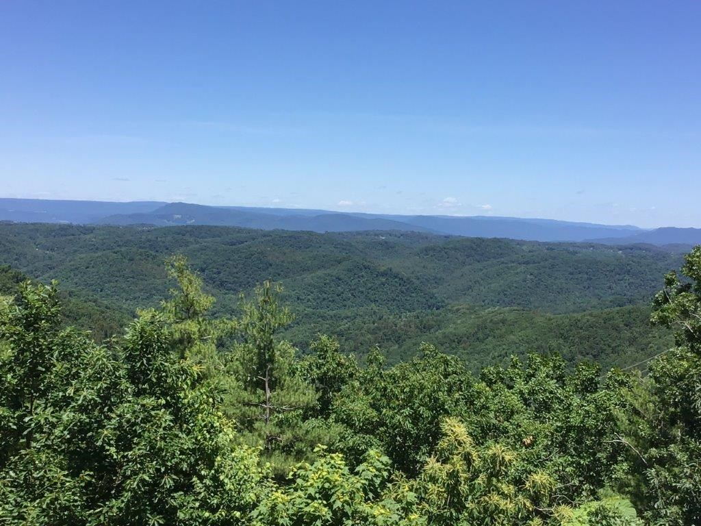 Mountain Land for Sale in Pilot VA