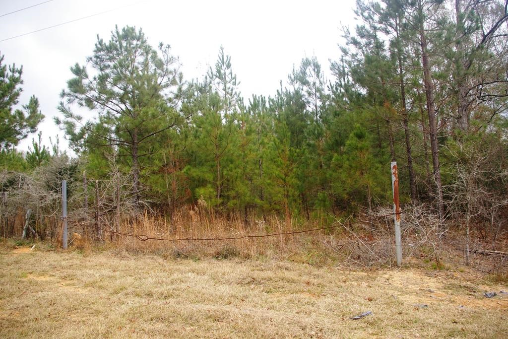 3 Acres Land for Sale North Pike School District Summit MS