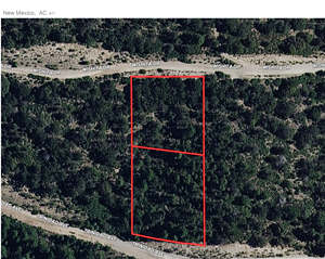MOUNTAIN LAND IN NEW MEXICO FOR SALE