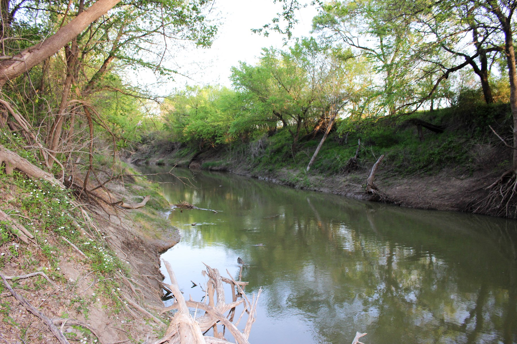 Leon River Frontage for Sale