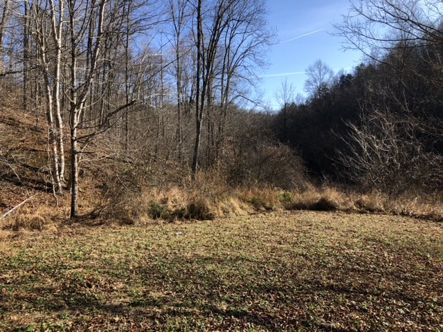 Great Hunting Land in Ritchie County, WV