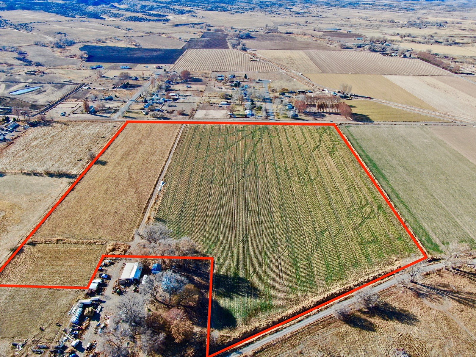 Colorado Row Crop and Farm Land For Sale, Olathe Colorado