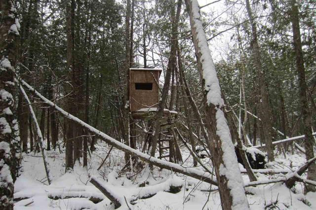 Vacant Land For Sale in Waupaca County