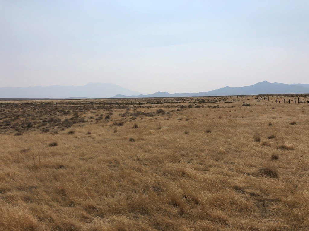 Northern Nevada Recreational Hunting Property For Sale