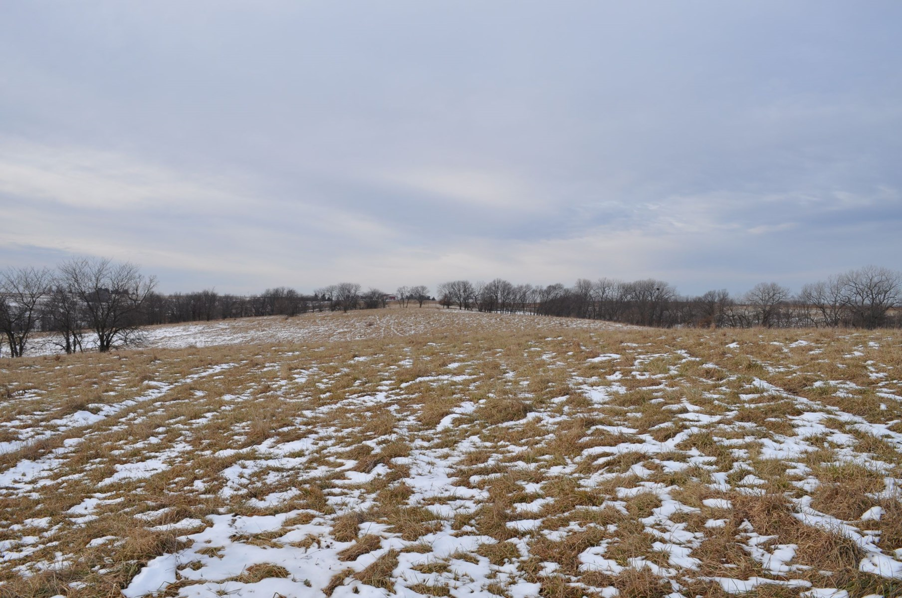 80 acres of Pasture in Gentry County