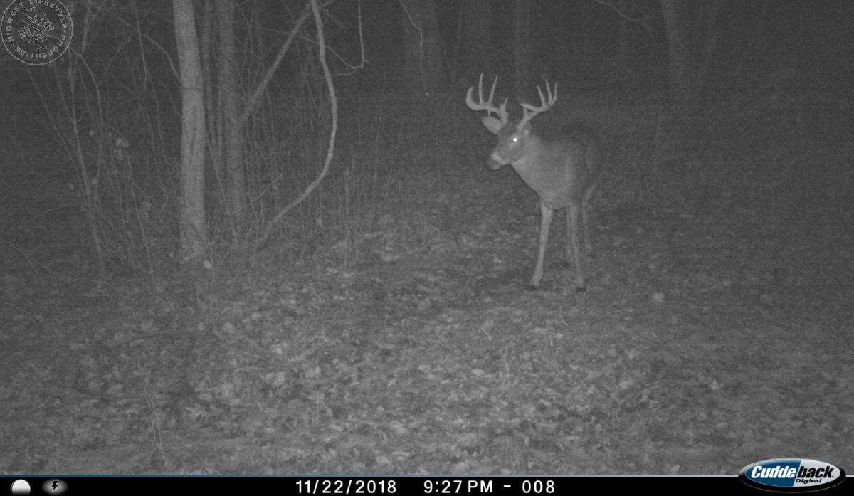 World Class Monster Buck Hunting Land in Southwestern WI