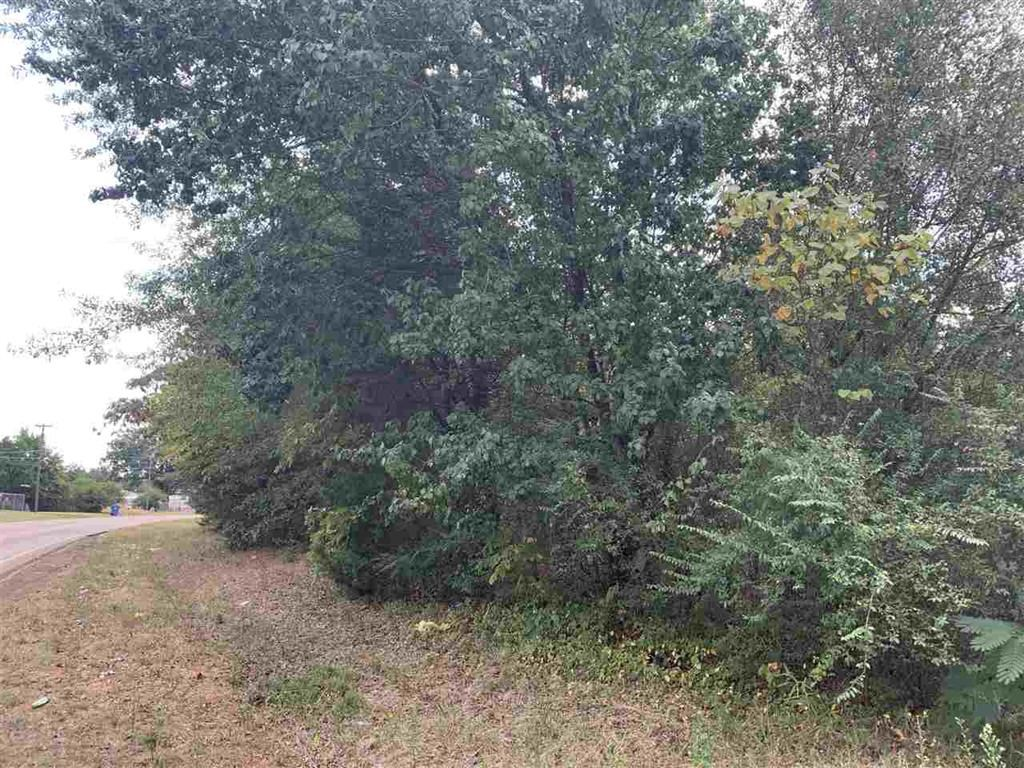 Land for Sale Cass County, Queen City, Texas