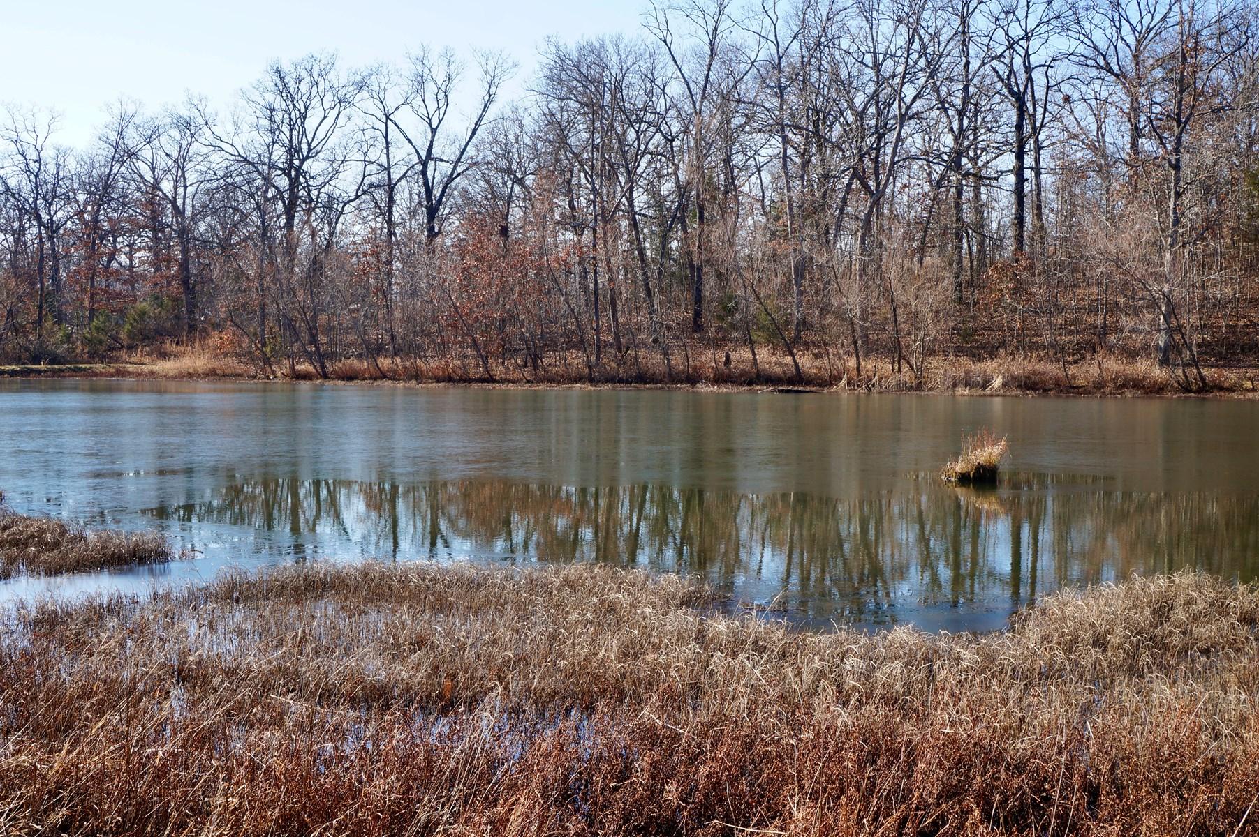Deer-Turkey-Fishing Camp / Osceola, MO