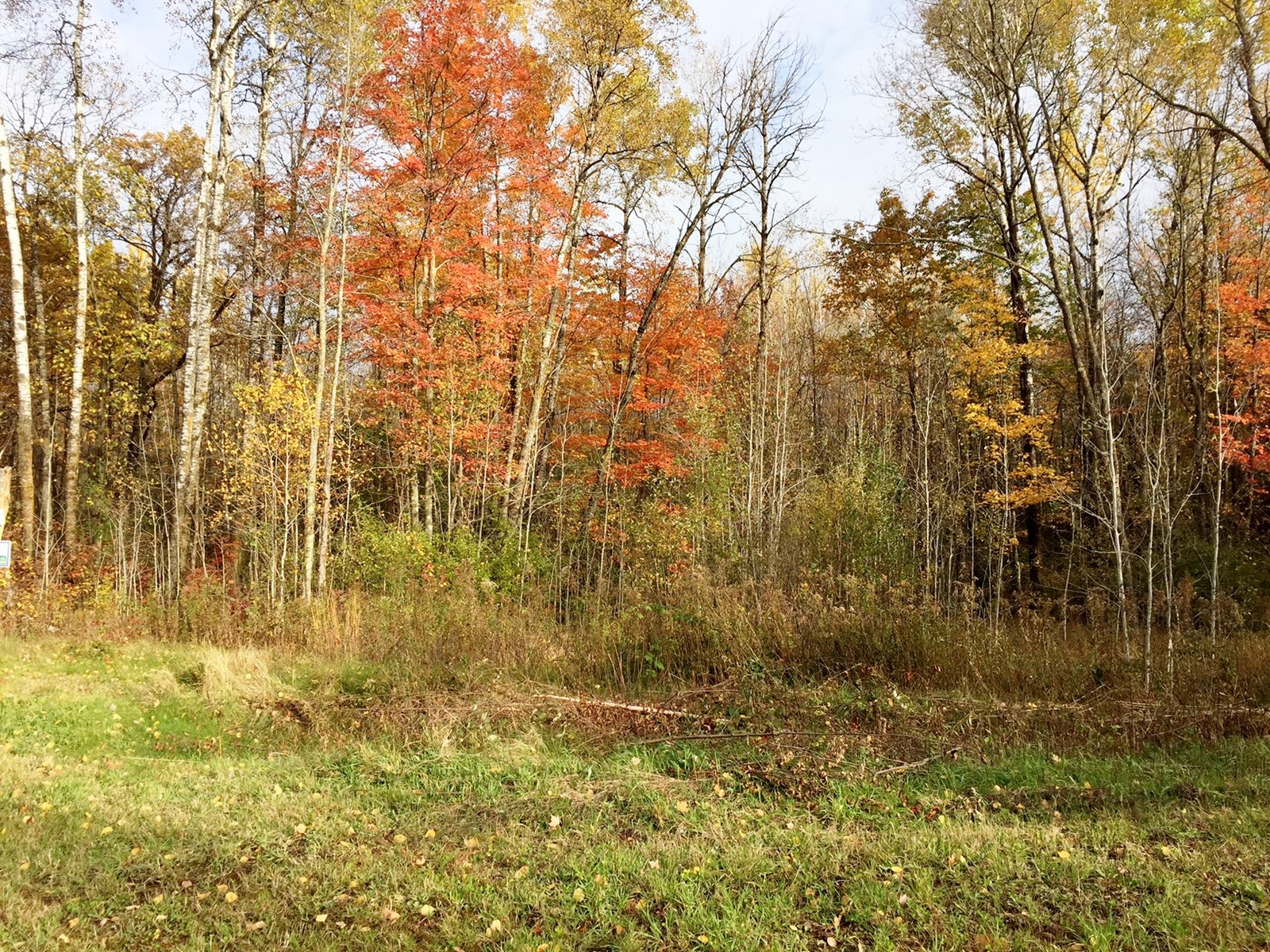 2 Acre Buildable Lot in Minnesota Subdivision, Sandstone MN