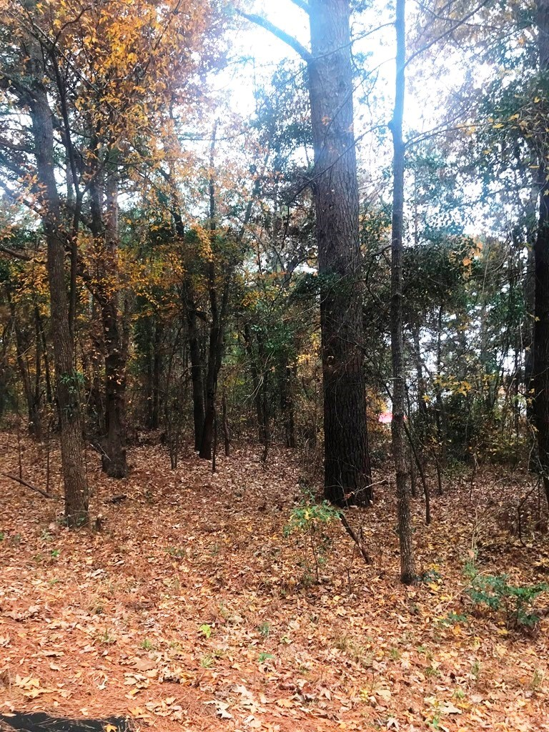 DOUBLE WATERVIEW LOTS ON LAKE PALESTINE IN EAST TEXAS