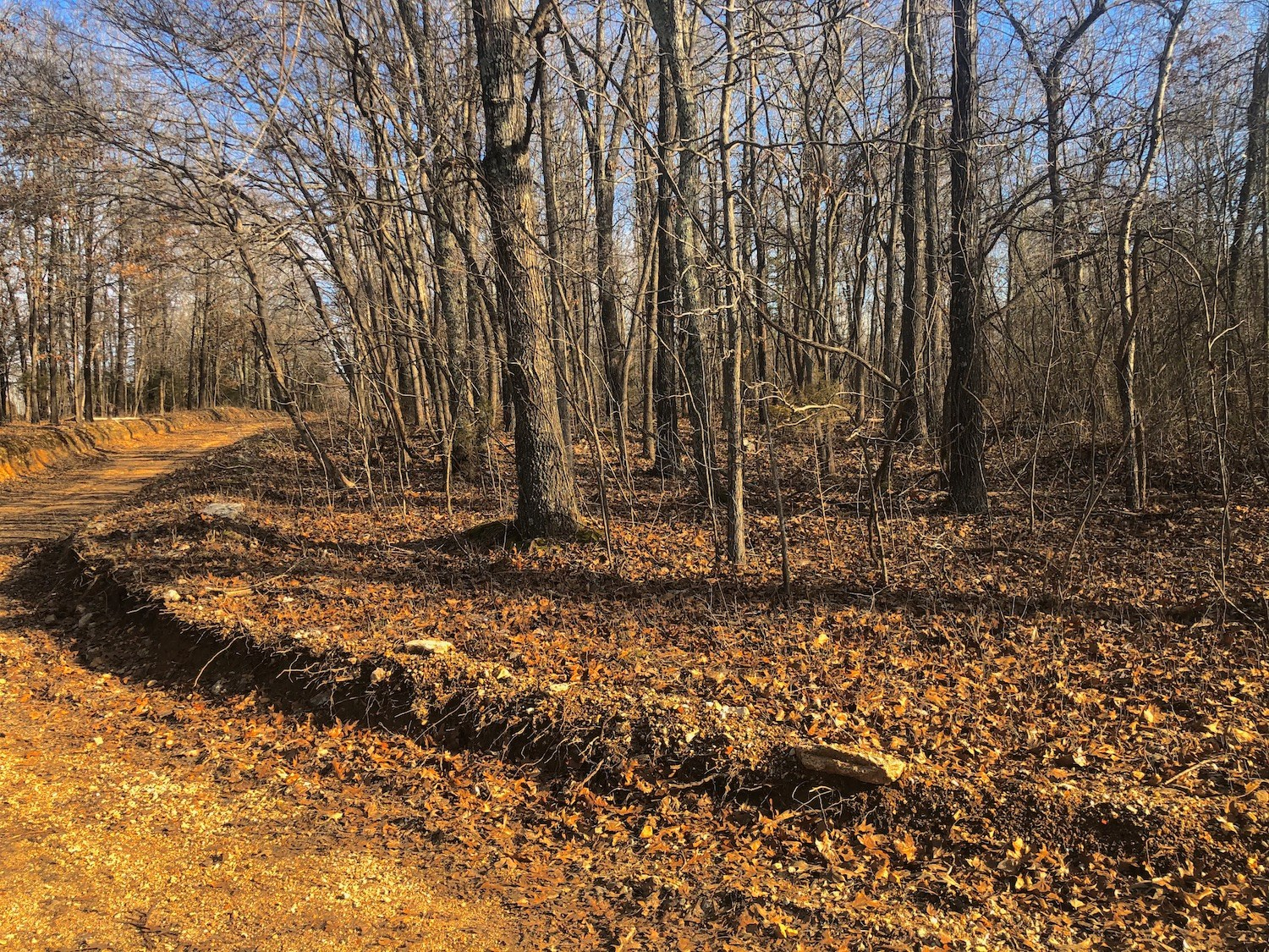 Land for Sale in the Missouri Ozarks