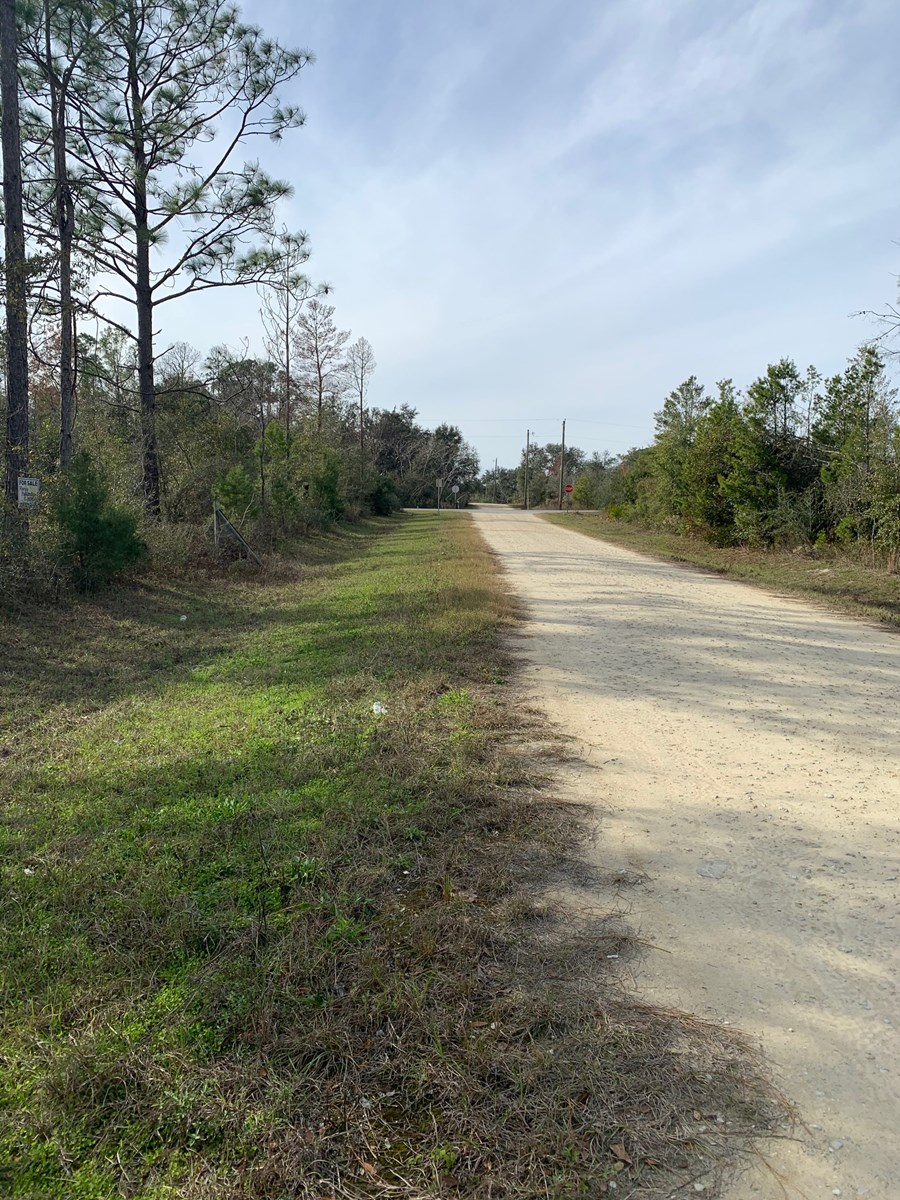 Country Lot for Sale in Altha, Fl