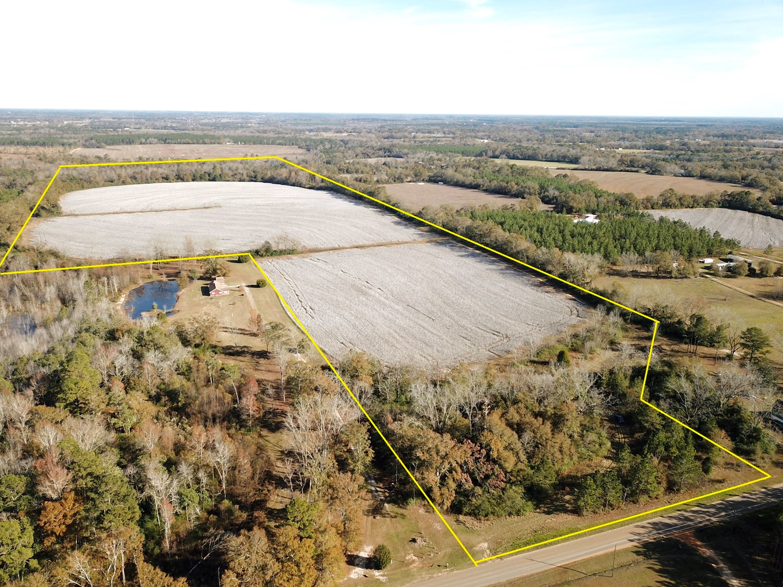 Farm Land for Sale, Slocomb Malvern Alabama