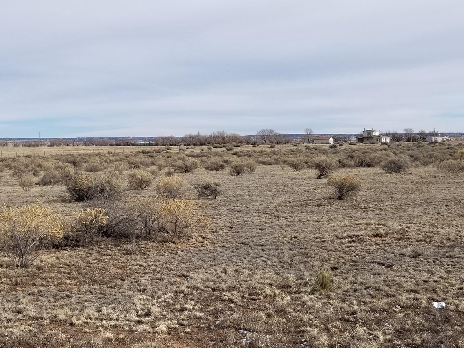 For Sale Estancia Valley NM Home Site Acreage By Moriarty