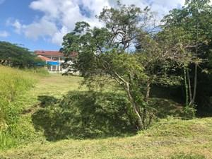 LOT FOR SALE IN PALMERAS DEL GOLF PANAMA