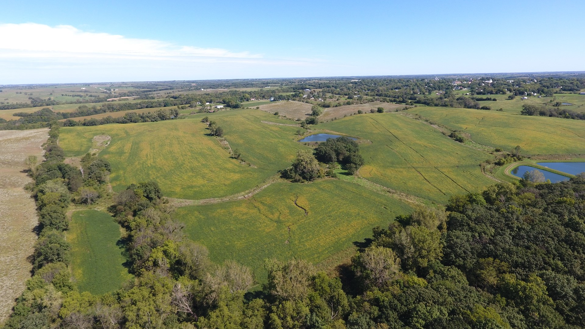 Worth County Missouri Tillable and Hunting Land For Sale