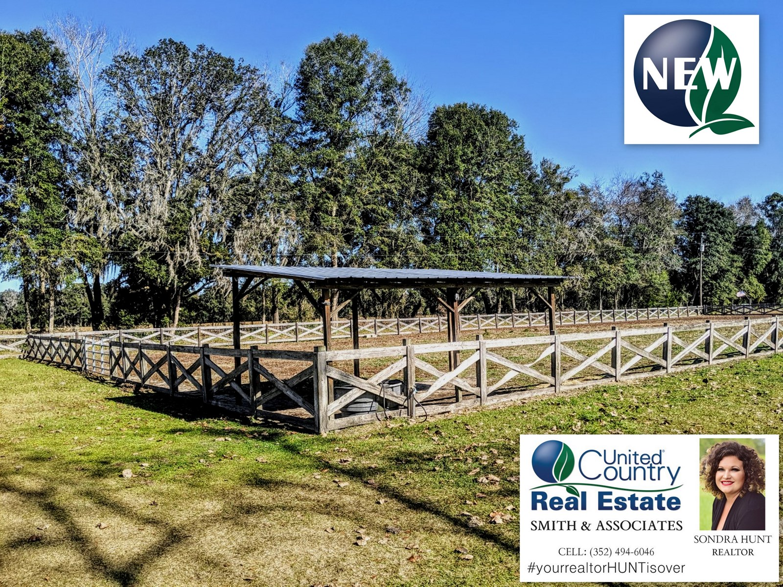 Horse Farm for Sale in North Florida