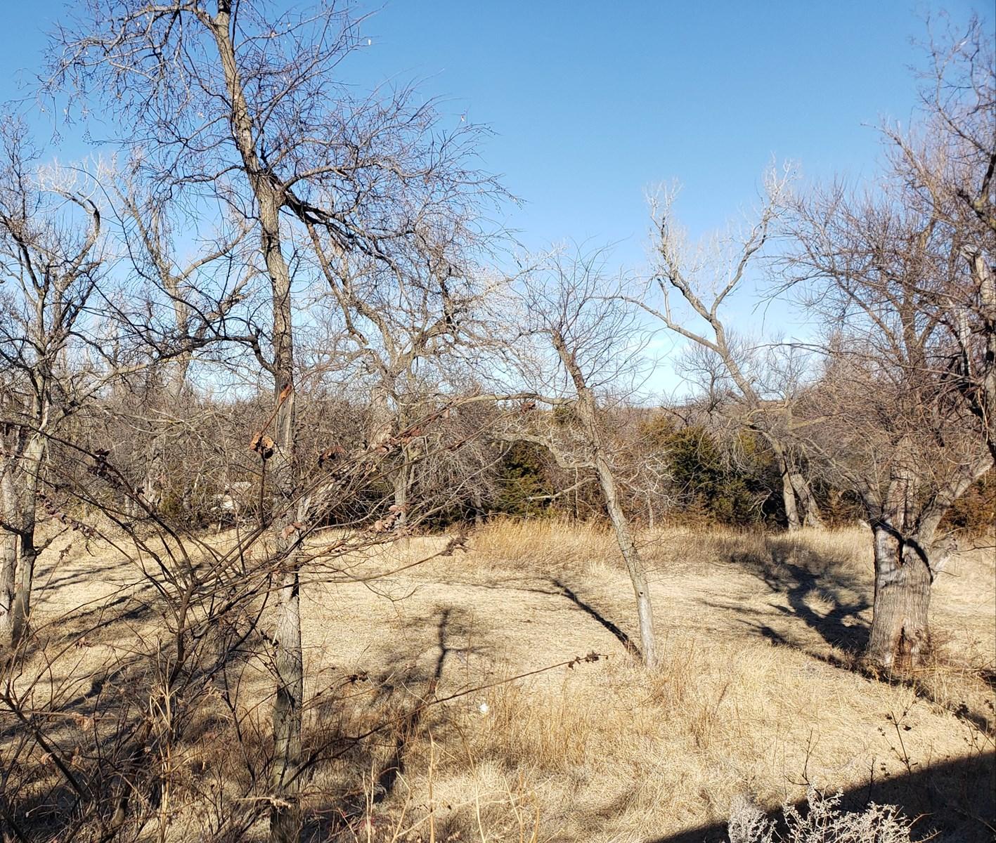 280 acres Barber County Kansas $395,000
