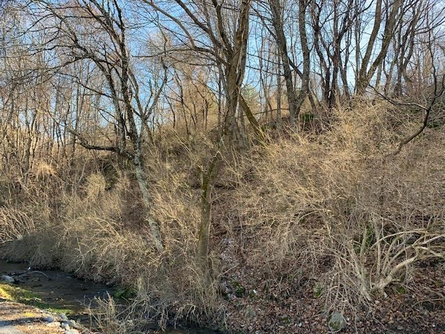 0.7 Acres Wooded Recreational Land Tazewell VA
