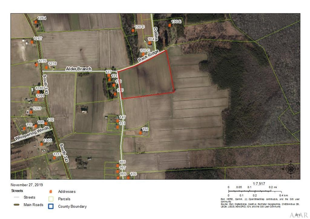 16 Acres of Land in Camden County