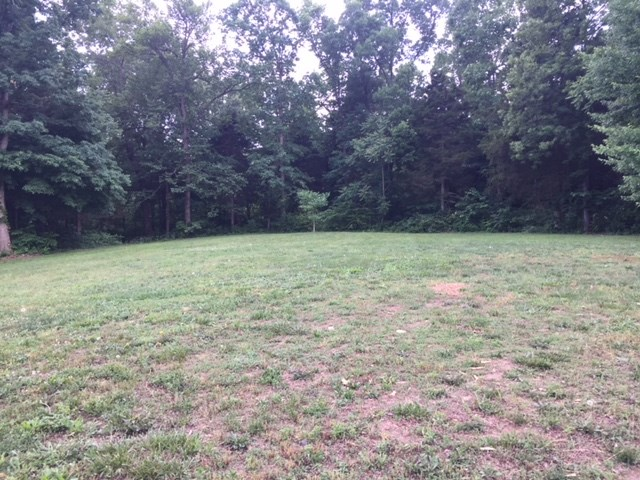 One acre building lot for sale in South Edmonson County Ky.