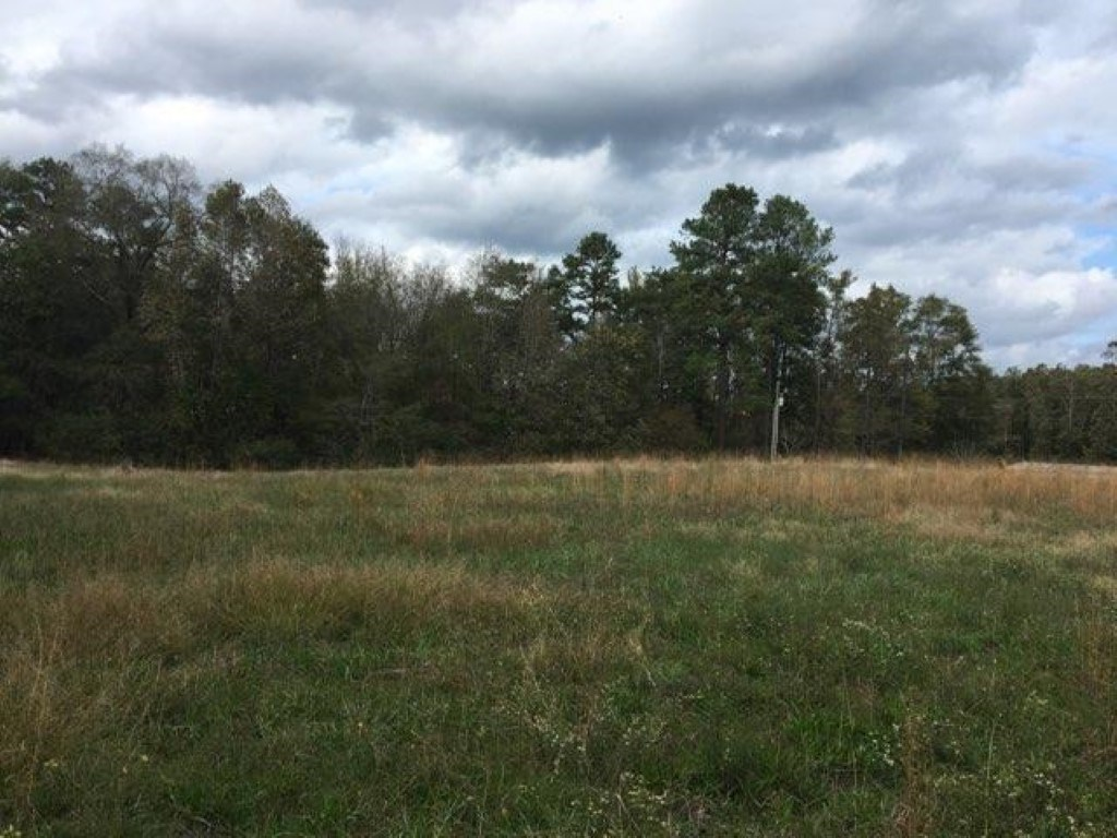 4.24 Acres in Southern Chatham Co. Near Deep River
