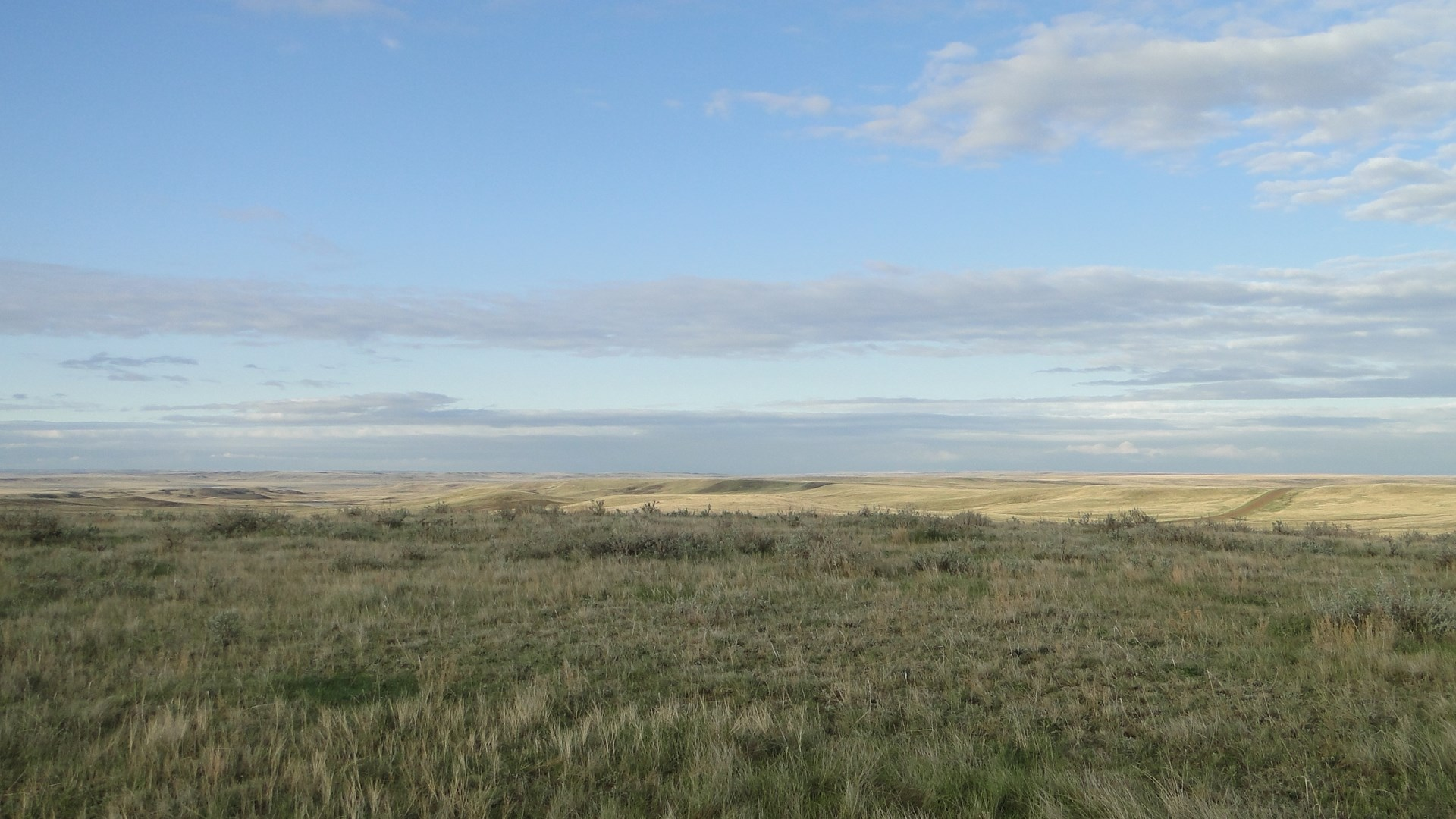 Grazing Land for Sale, 320 Deeded Acres, County Road Access
