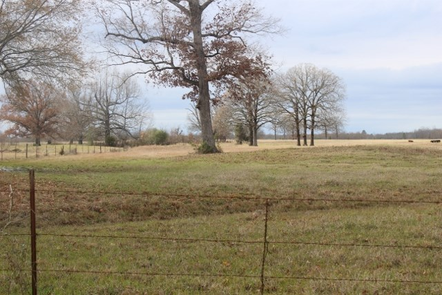 110 acres in Bowie County, Texas