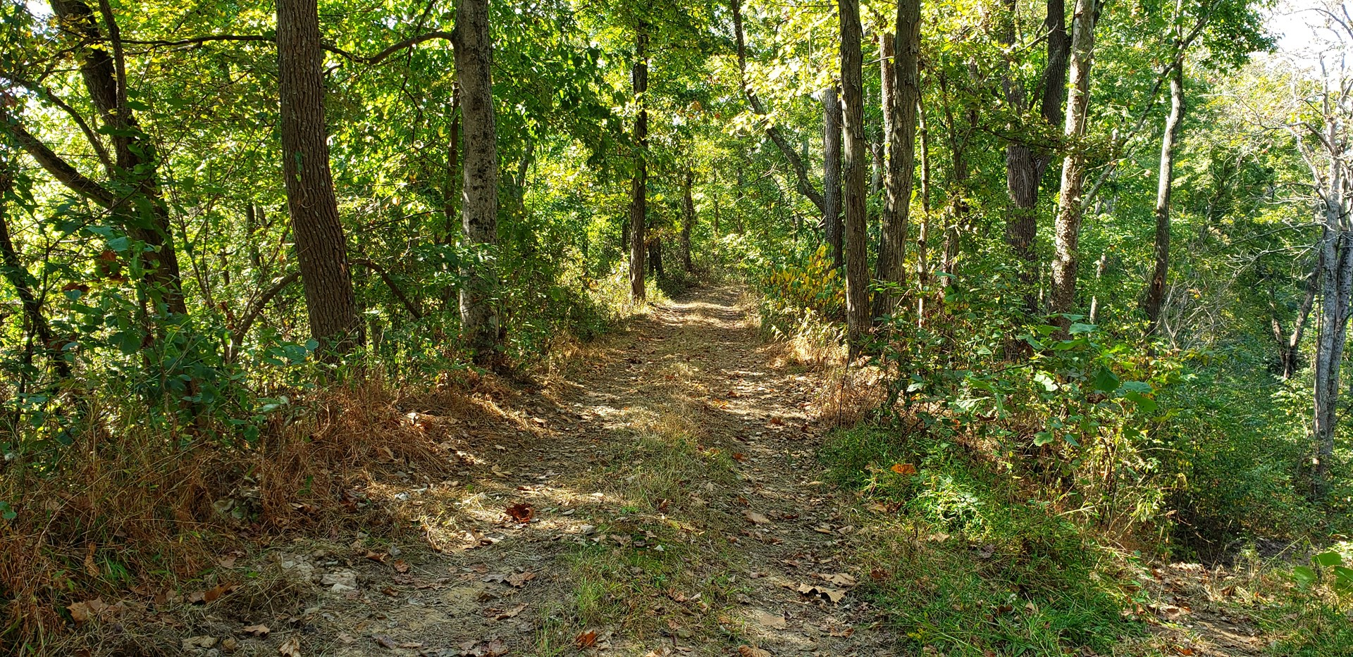 Hunters dream,  48 acre Hunting Ranch in Meigs County Ohio