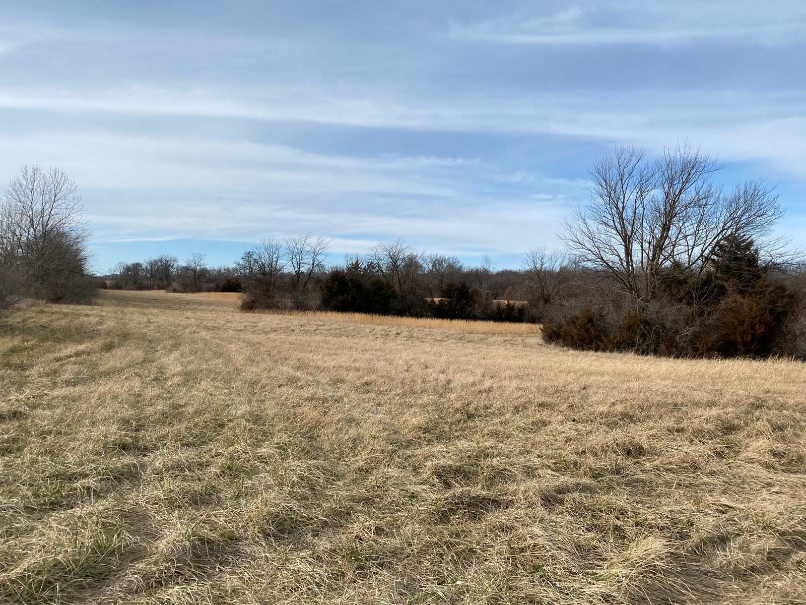 Country Home Site near Columbia, MO for Sale