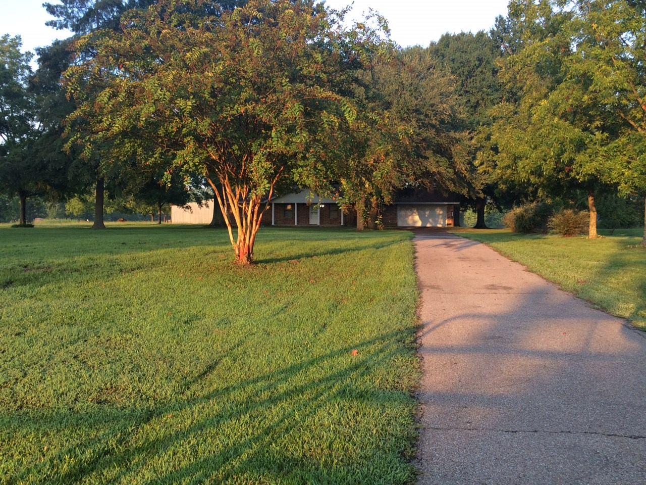 Country Ranch Equine Property For Sale Annona Texas