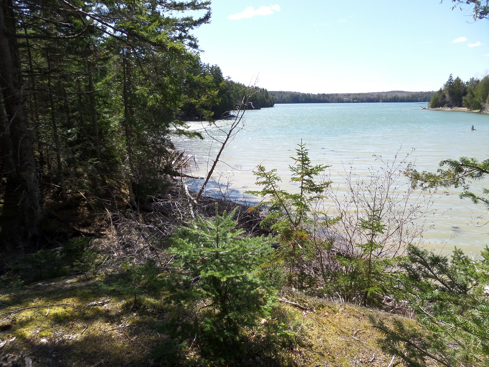 Coastal Land Lot For Sale in Lubec, Maine