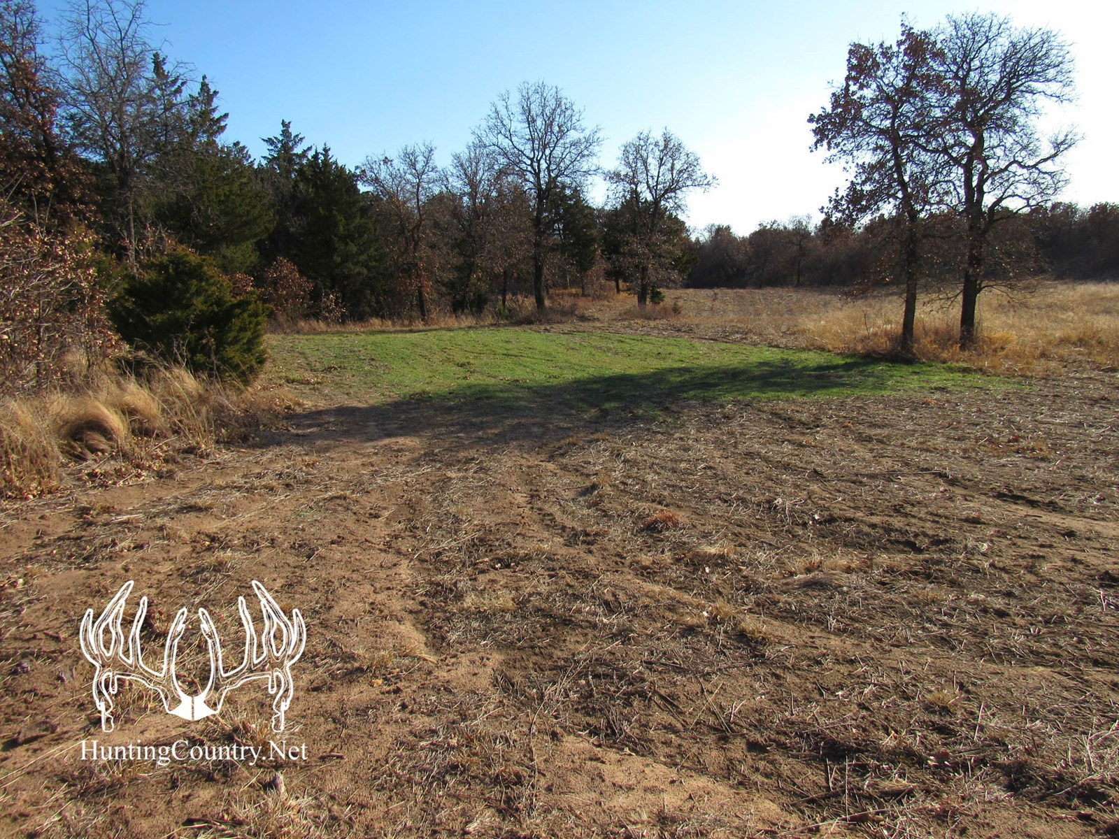 40 acres m/l MAJOR COUNTY, OKLAHOMA LAND for SALE