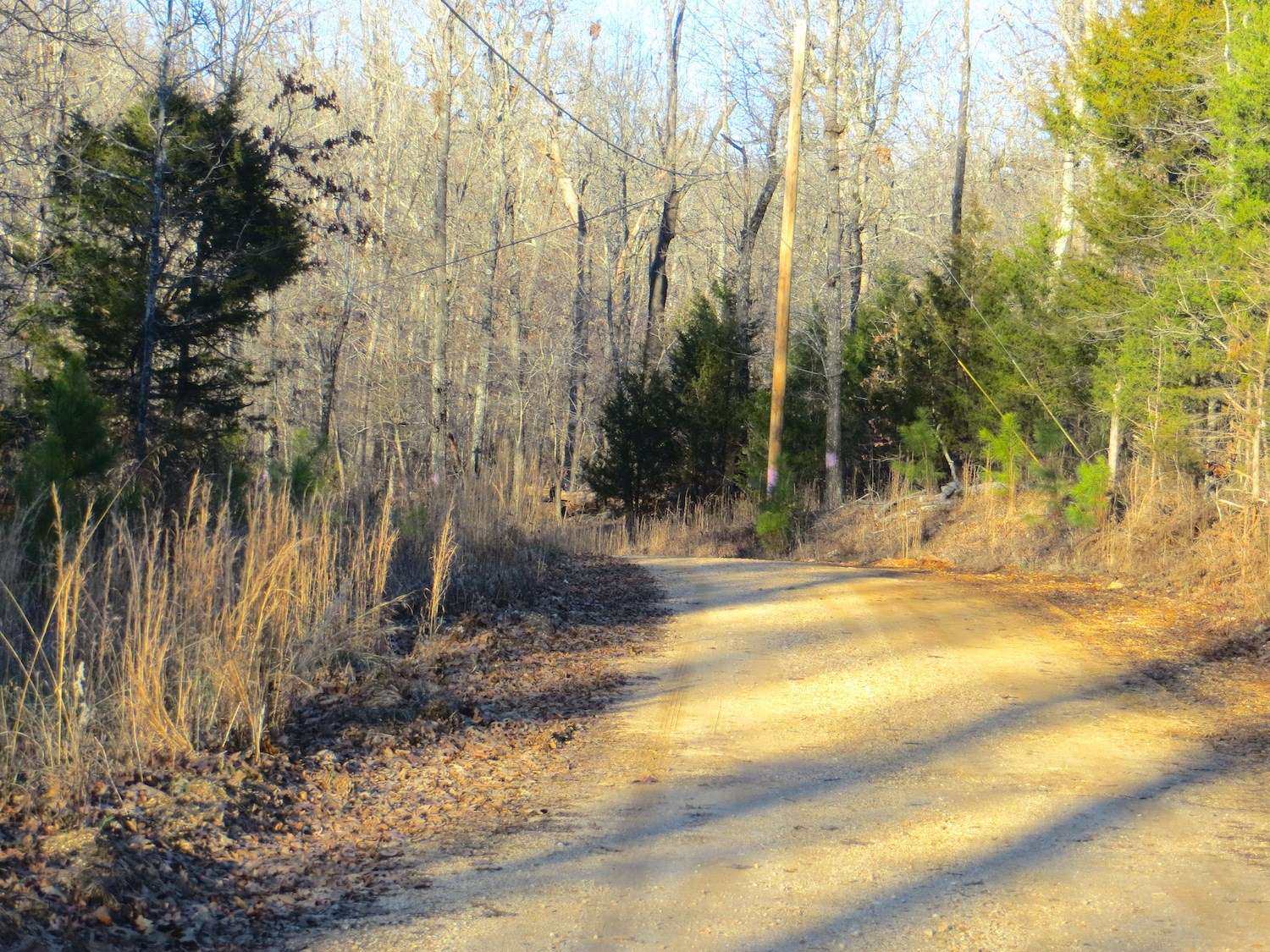 Hunting Land for Sale in Hardy, AR