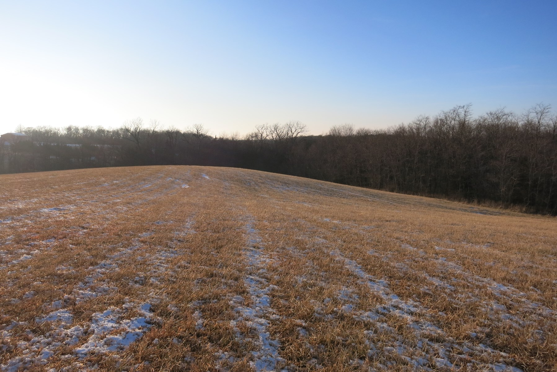Land For Sale in Eagleville Mo