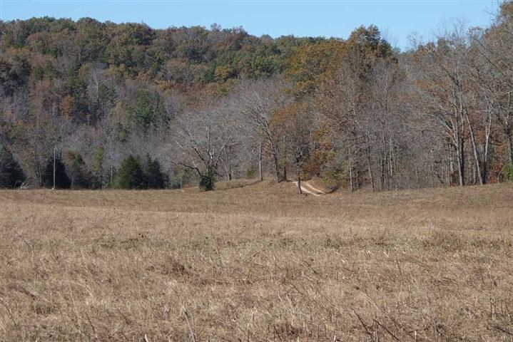 SOUTHERN MO LAND FOR SALE -68 ACRES-TROPHY ELK,DEER,TURKEY