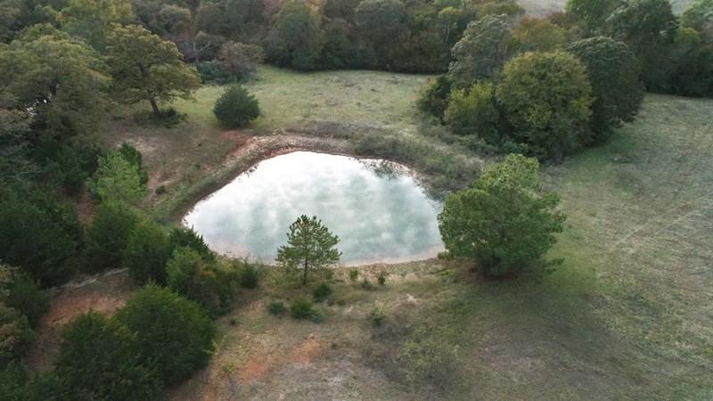 Land For Sale - Centerville, TX - Leon County, Tx